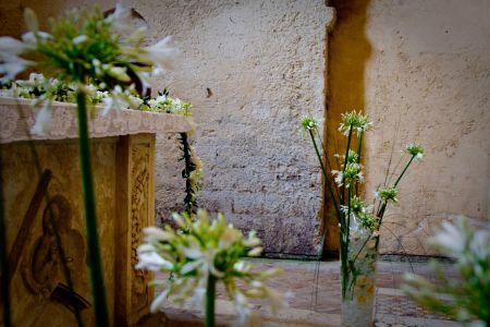 Michelle-Josef-Wedding-day-0269