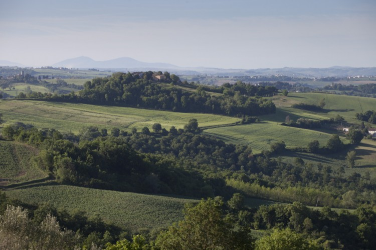 Countryside wedding in Umbria Italy